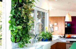 Productos reutilizables para una cocina ecológica